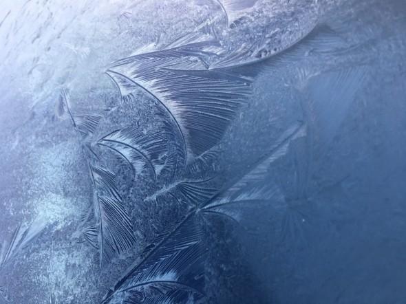 Frost patterns on a car windscreen